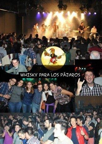 Whisky para los pájaros en concierto
