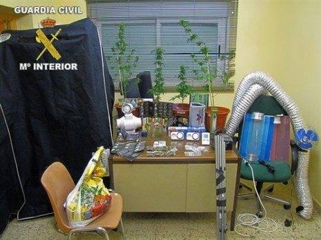 fotonoticia_invernadero para cultivo de marihuana