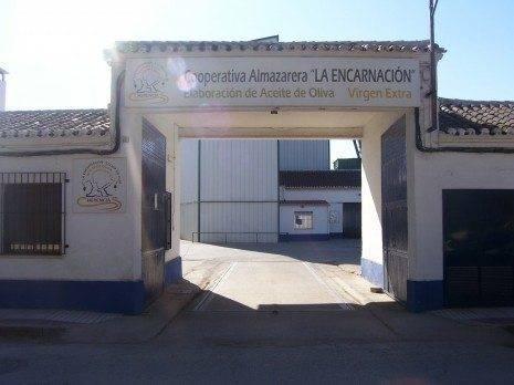 """Cooperativa Almazara La Encarnaci%C3%B3n 465x348 - Iniciada la recogida de alimentos entre los socios de la Cooperativa """"La Encarnación"""""""