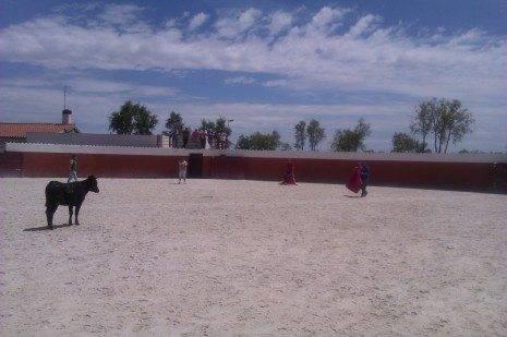 Miembros de la peña taurina visitando una ganadería