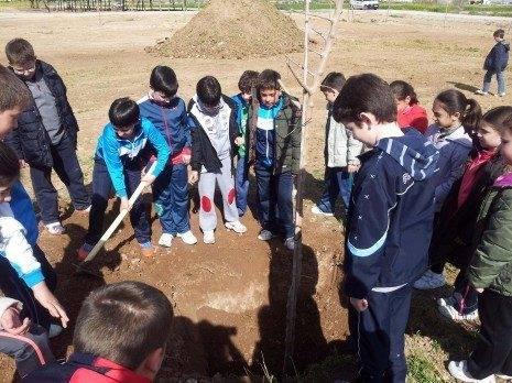 herencia dia arbol PRINCIpal 465x348 - Escolares de Herencia festejan el día forestal mundial plantando moreras