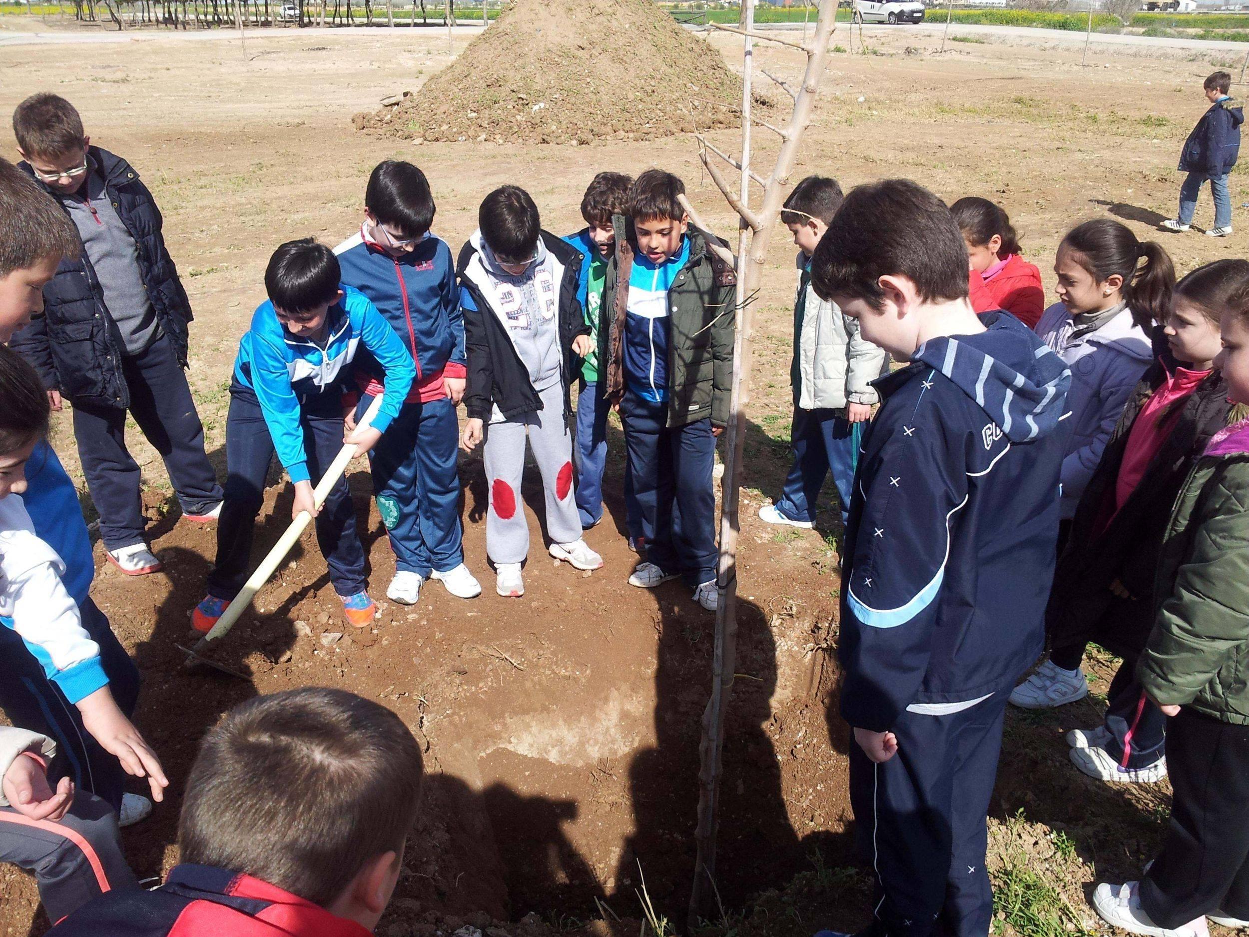 Escolares de Herencia plantando moreras durante el día mundial del árbol