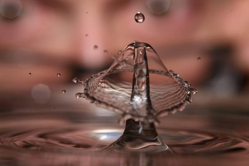 flickr 4093575863 original - Jornadas prácticas sobre las instalaciones de riego en la Comunidad de Regantes