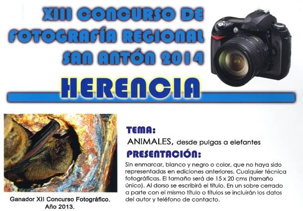 XIII Concurso fotográfico de San Antón - Herencia 2014
