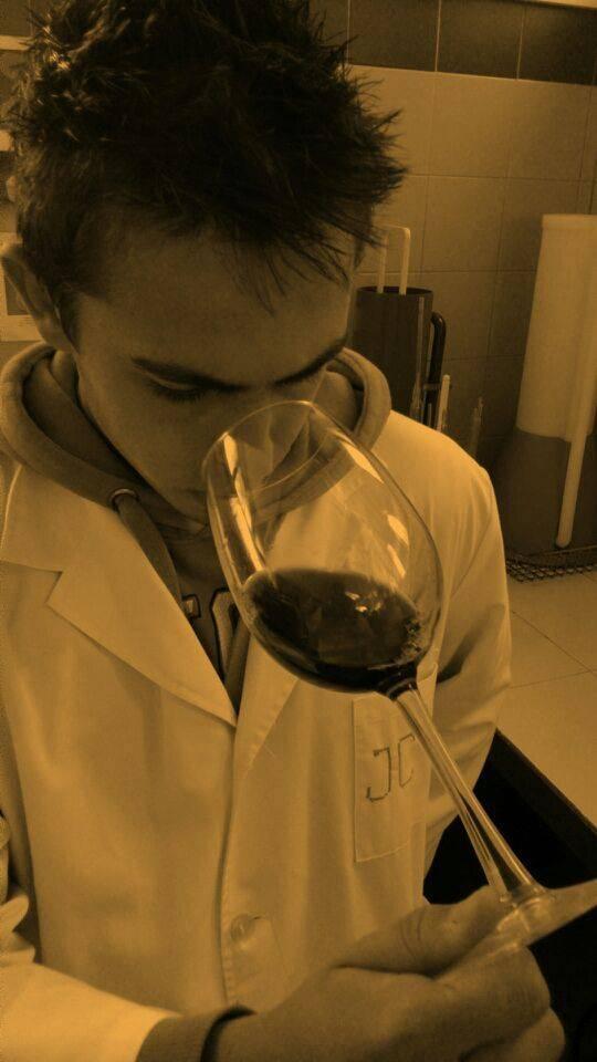 Entrevista al enólogo José Carlos Díaz-Pavón 1