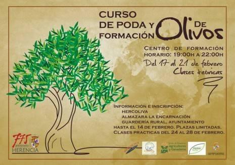 Curso de poda en Herencia y formación del olivar