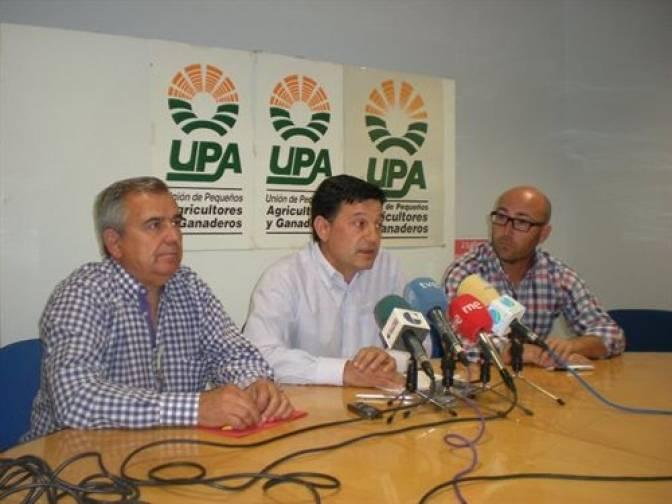 UPA C LM - UPA C-LM exige medidas urgentes para combatir la plaga de conejos en los cultivos