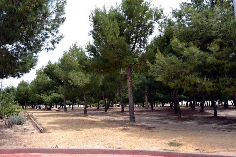 herencia parque de la serna red - El Ayuntamiento de Herencia moderniza y automatiza su riego de zonas verdes