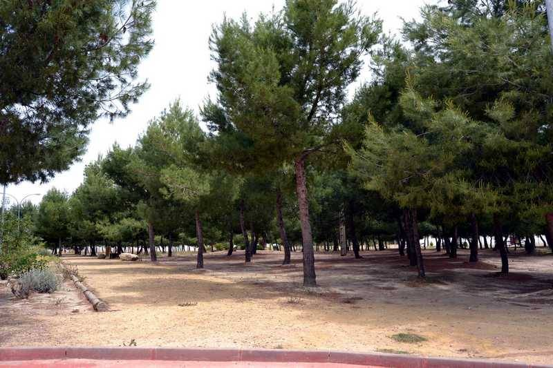 Parque de La Serna de Herencia