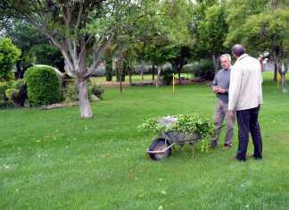 Jesús Fernandez junto al jefe de jardinería municipal de Herencia
