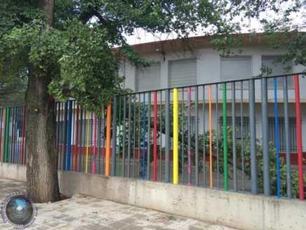 arboles caidos en herencia ciudad real 5 437x328 - Herencia de las más afectadas por las tormetas