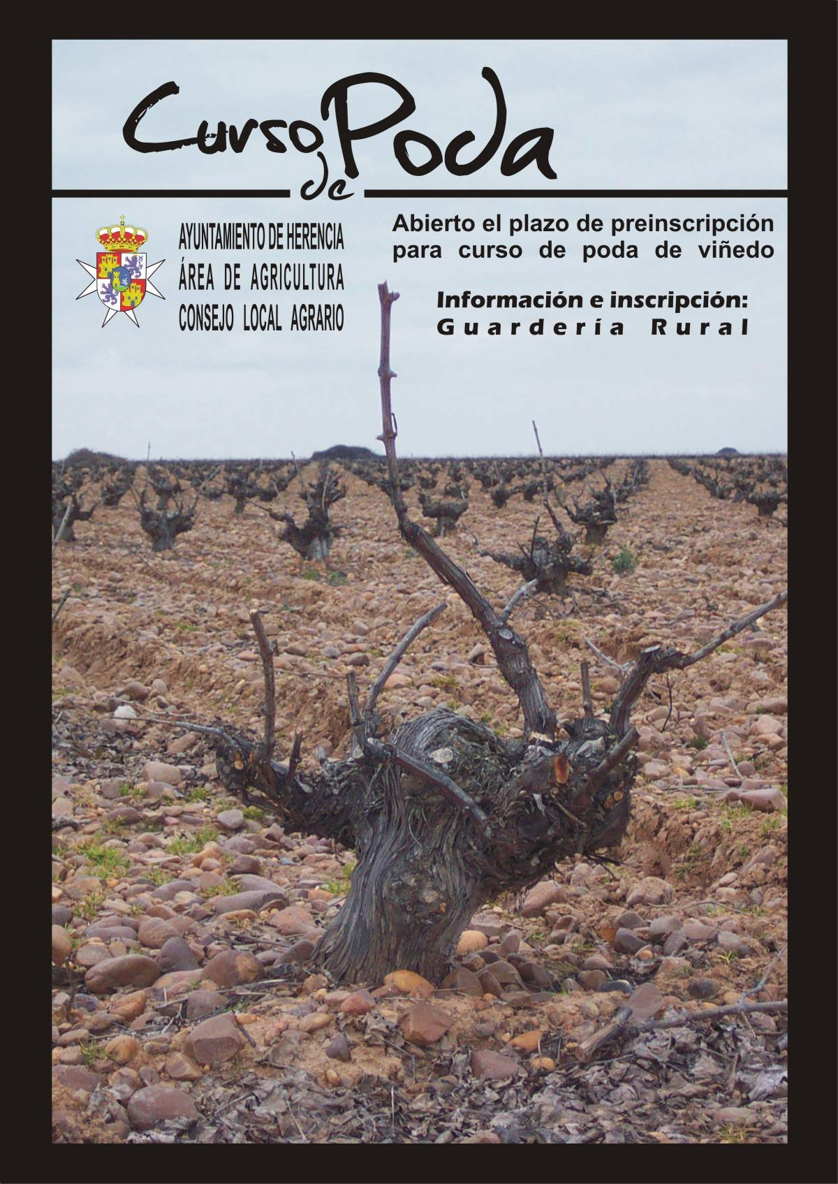 Curso de poda del viñedo