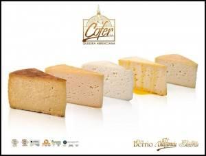 quesos cofer 300x228 - Cofer repite un año más en los Óscar de los quesos