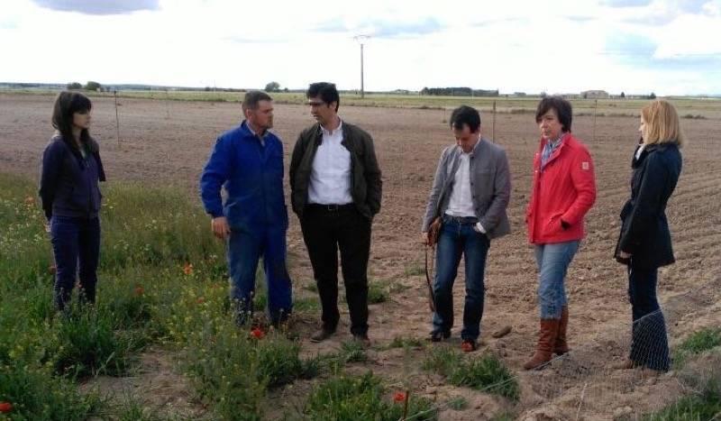 CABALLERO EN HERENCIA 8 - José Manuel Caballero visita una explotación ganadera de Herencia