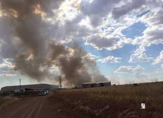 Guardia Civil en Incendio en Herencia (Ciudad Real)