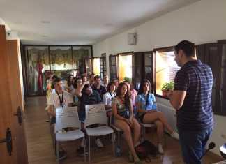 peregrinación jóvenes a Ávila