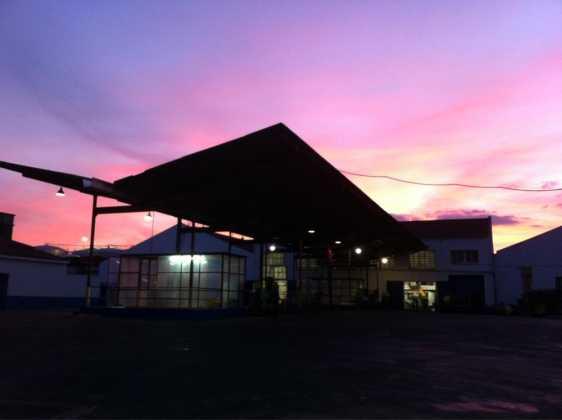 vendimia en herencia y cooperativa amanecer 562x420 - La vendimia 2015 en Herencia a pleno rendimiento