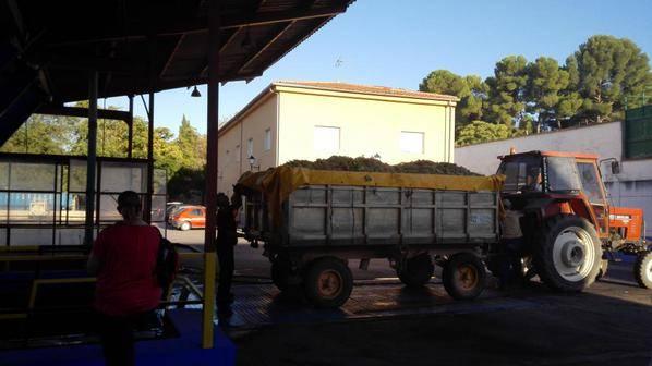 vendimia en herencia y cooperativa tractor para descargar - La vendimia 2015 en Herencia a pleno rendimiento