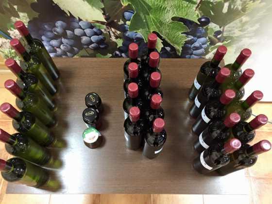 entrega premios concurso del vino en Herencia 20 560x420 - Entrega de premios III Concurso de Vinos, Mistelas y Arropes artesanales