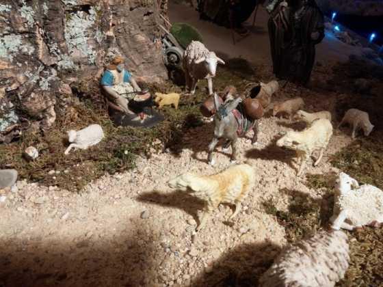 Belen familia Gallego de la Sacristana Glez Ortega18 560x420 - Muestra de belenes populares de Herencia. Fotogalería
