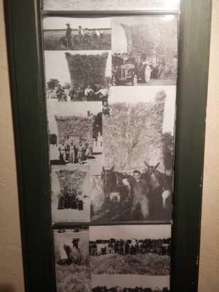 Fotogalería de la exposición de decoración Bodegones de Navidad 27