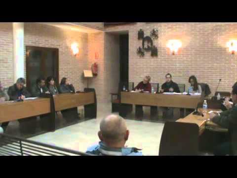Disponible el vídeo del último pleno del año 2015 1