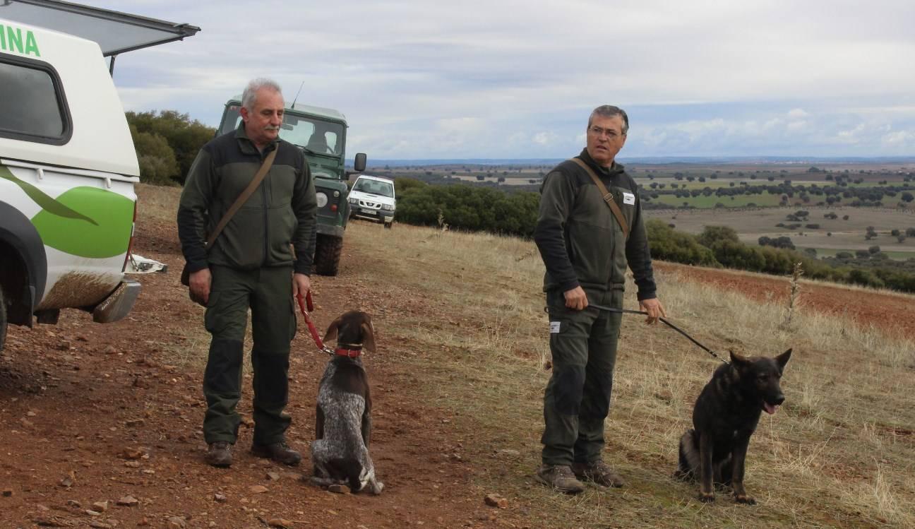 patrulla canina - el chaparrillo