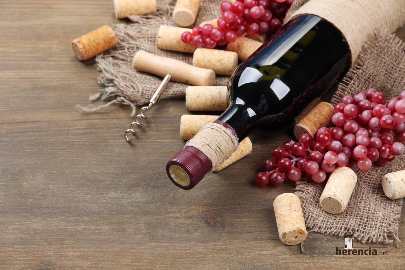 denominacion origen vino de la mancha - 1