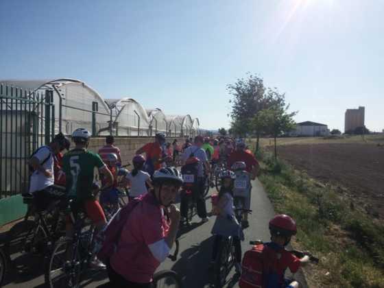 IX Marcha en bicicleta contra el c%C3%A1ncer022 560x420 - Galería de fotos y vídeo de la IX Marcha en bicicleta