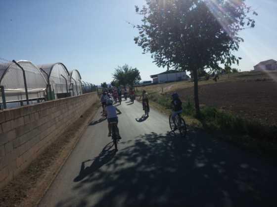 IX Marcha en bicicleta contra el c%C3%A1ncer025 560x420 - Galería de fotos y vídeo de la IX Marcha en bicicleta