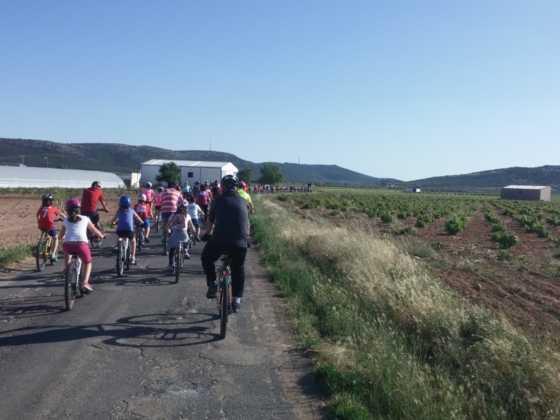 IX Marcha en bicicleta contra el c%C3%A1ncer048 560x420 - Galería de fotos y vídeo de la IX Marcha en bicicleta