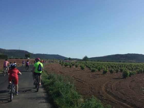 IX Marcha en bicicleta contra el c%C3%A1ncer051 560x420 - Galería de fotos y vídeo de la IX Marcha en bicicleta