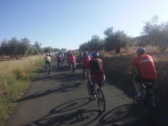 IX Marcha en bicicleta contra el c%C3%A1ncer061 560x420 - Galería de fotos y vídeo de la IX Marcha en bicicleta