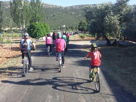 IX Marcha en bicicleta contra el c%C3%A1ncer063 560x420 - Galería de fotos y vídeo de la IX Marcha en bicicleta