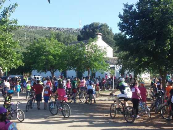 IX Marcha en bicicleta contra el c%C3%A1ncer066 560x420 - Galería de fotos y vídeo de la IX Marcha en bicicleta