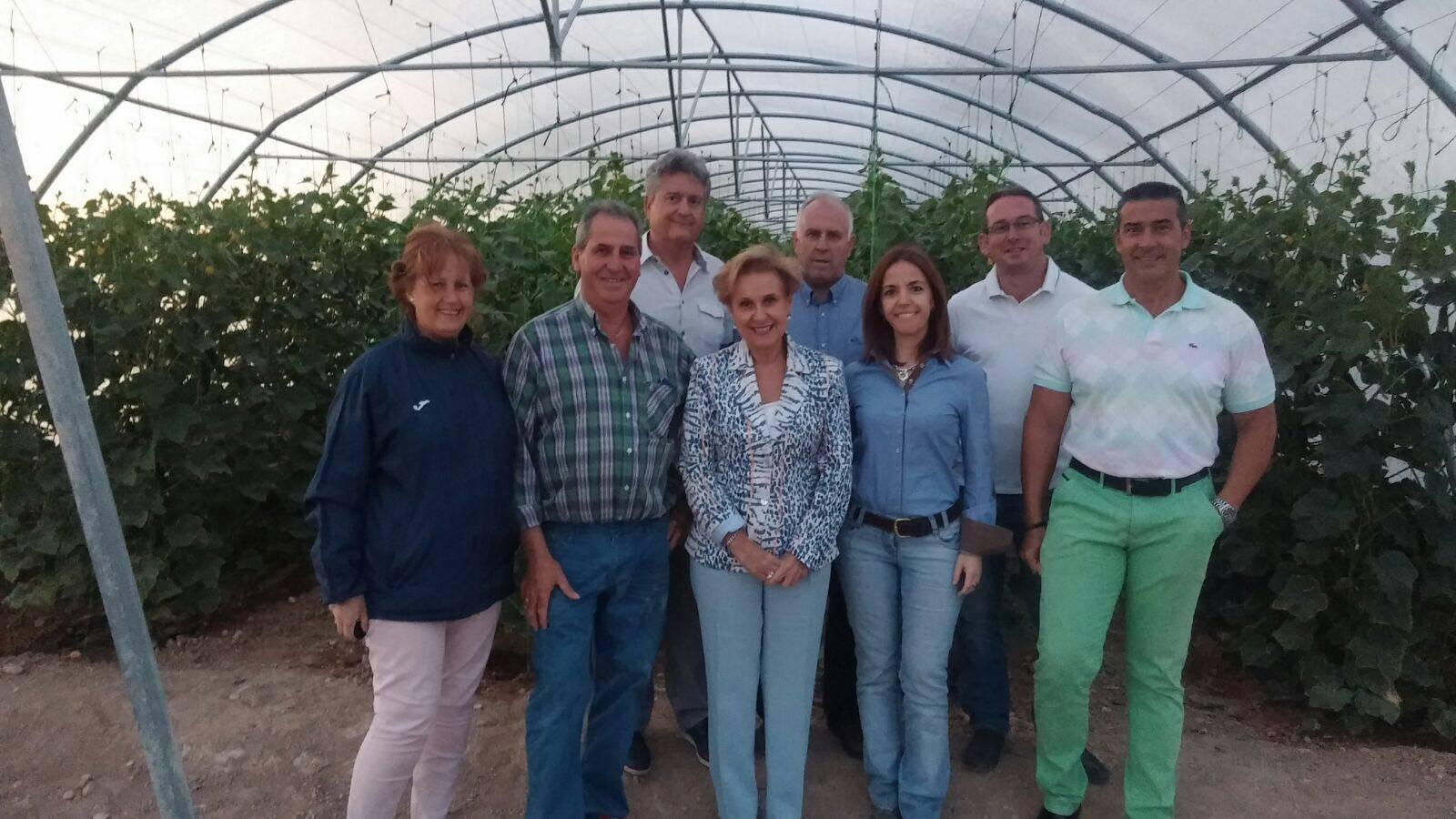 visita Carmen Quintanilla del Partido Popular a un invernadero de Herencia