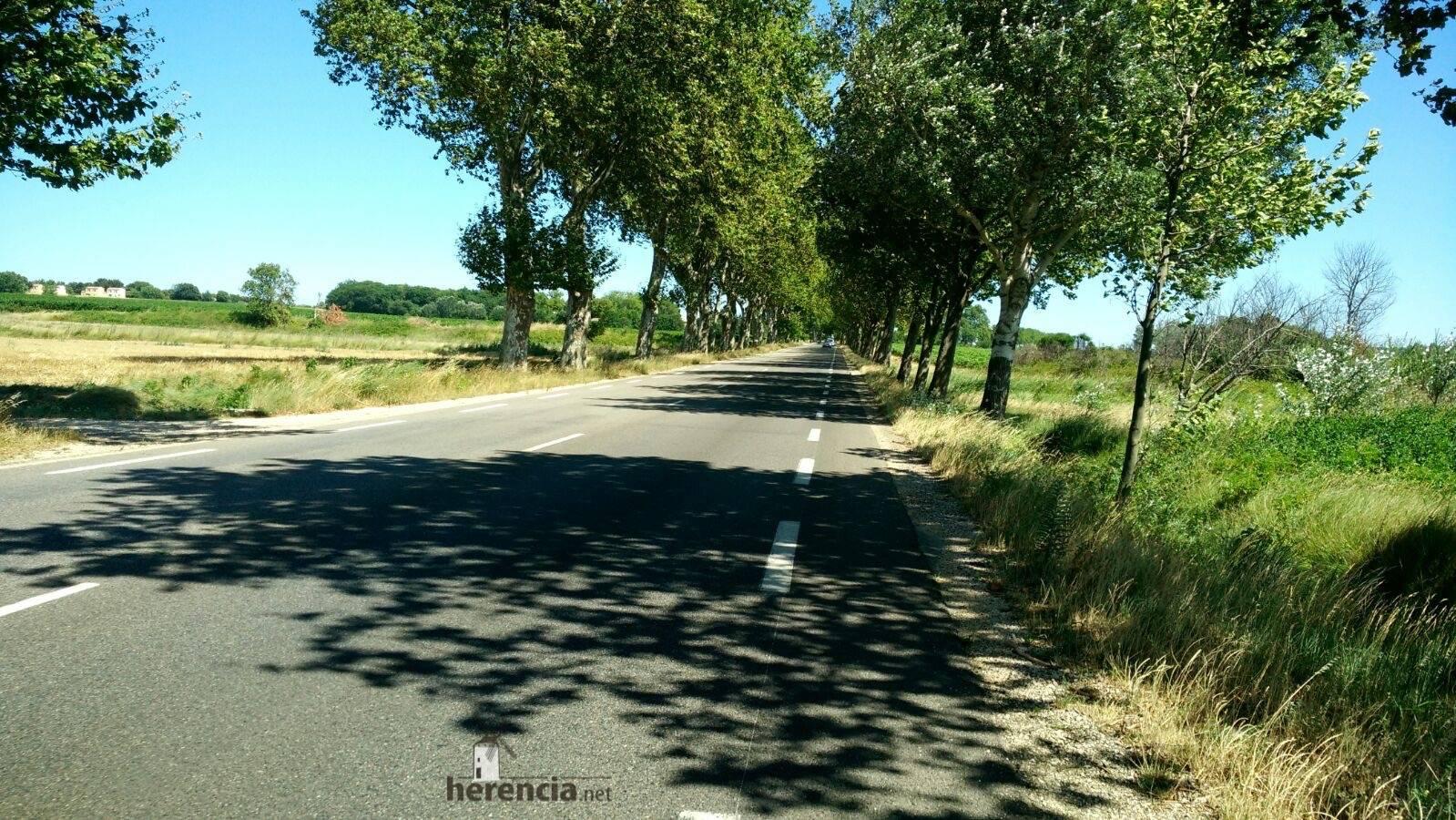 elias escribano - perle en pont du gard - Francia 3