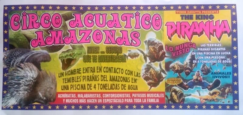 Circo auatico amazonas en Herencia 1 - El circo acuático Amazonas permanecerá en Herencia varios días