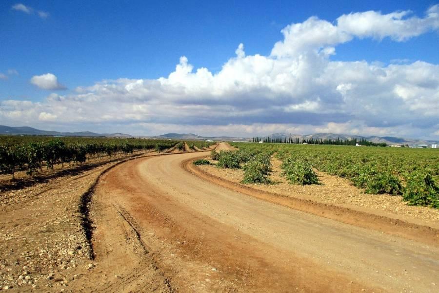 El Ayuntamiento De Villarta De San Juan Acomete Arreglos De Nuevos Caminos Del Término Municipal 1