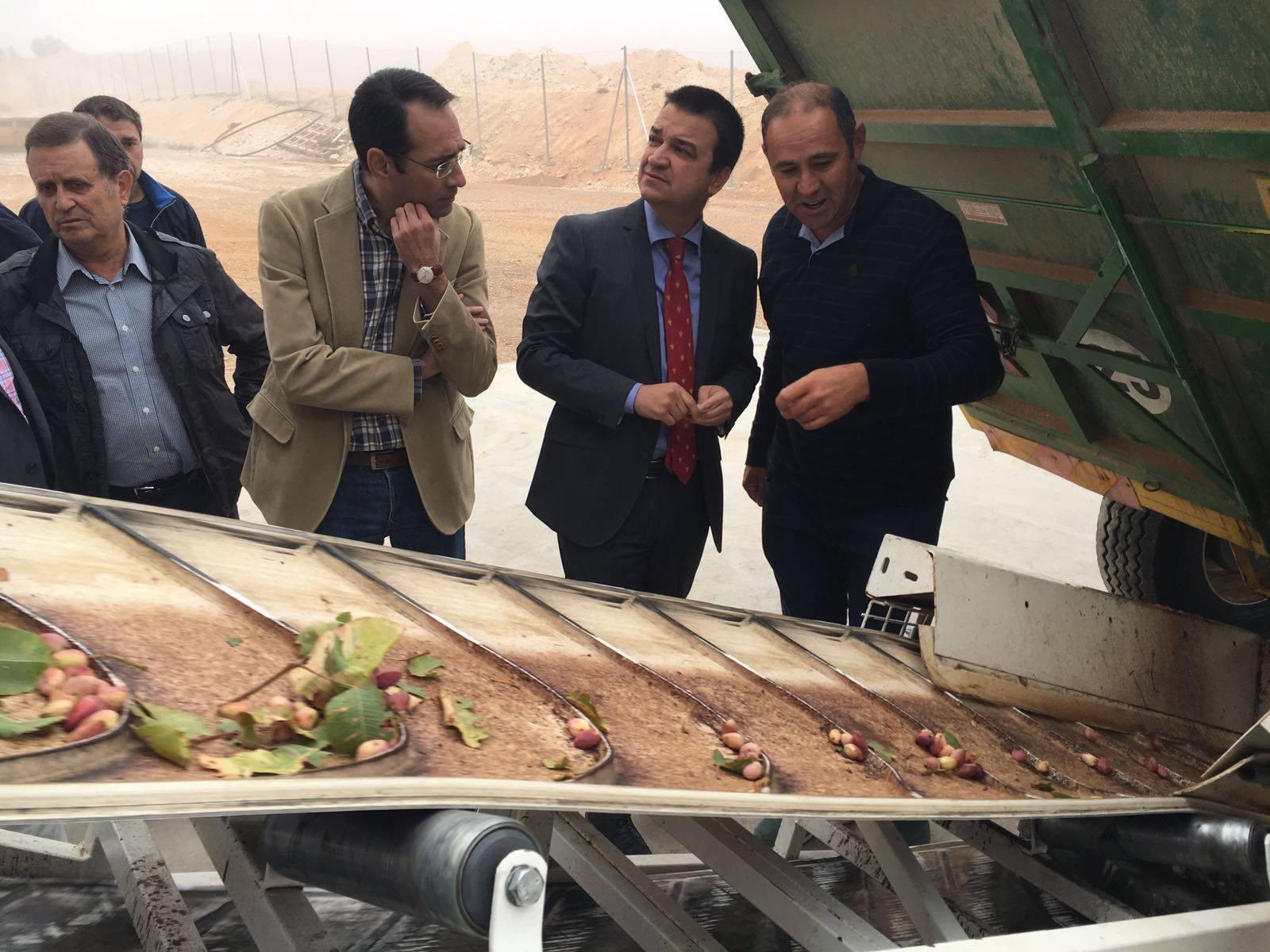 castilla la mancha referencia del pistacho mundial - La Mancha quiere ser una referencia del pistacho a nivel europeo