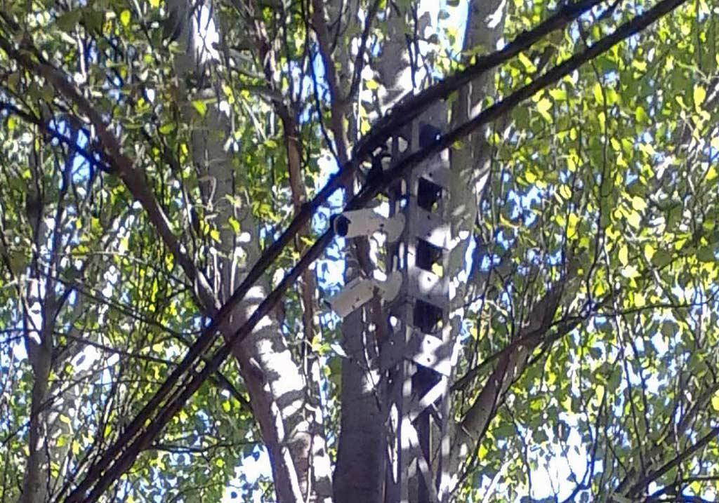 Instaladas videocámaras de vigilancia en varios parques de Herencia 1