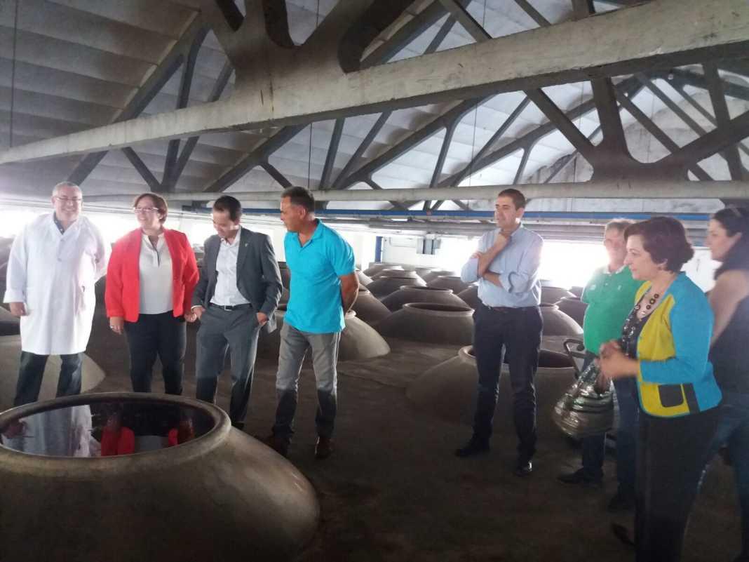 visita a cooperativa vitivinicola san jose en herencia 3 1068x801 - Visita a las instalaciones de la Cooperativa San José en Herencia