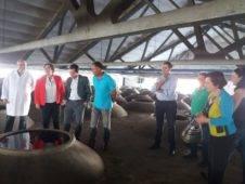 visita a cooperativa vitivinicola san jose en herencia 3 226x170 - Visita a las instalaciones de la Cooperativa San José en Herencia