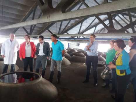Visita a las instalaciones de la Cooperativa San José en Herencia 2