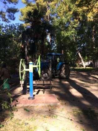 Campaña de poda y saneado del arbolado del parque municipal 35