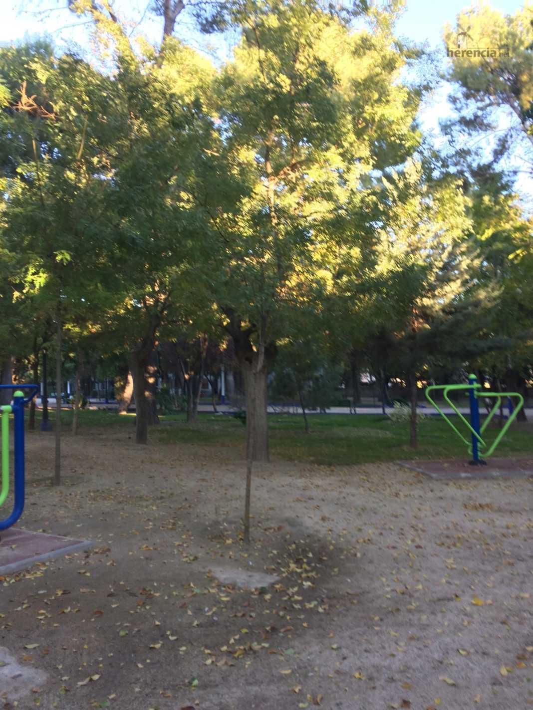 El parque municipal se cierra debido a los fuertes vientos 4