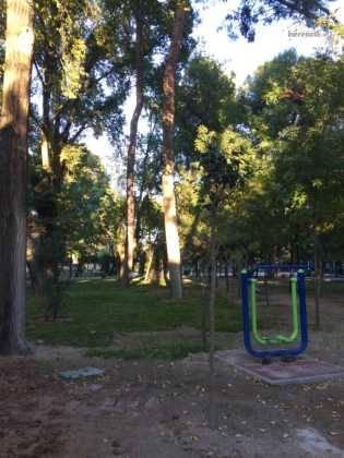 Campaña de poda y saneado del arbolado del parque municipal 55