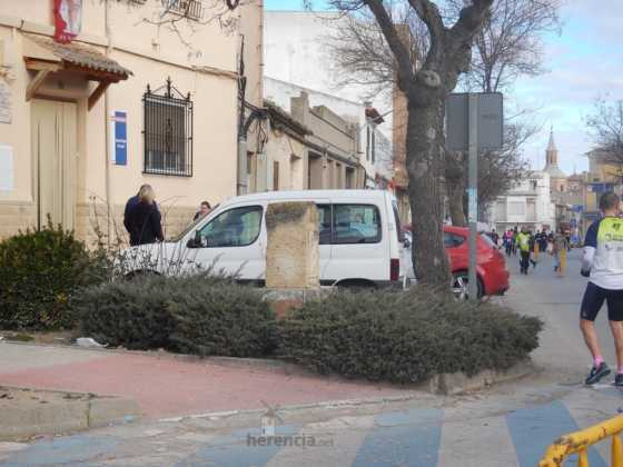 carrera popular 2017 san anton 12 560x420 - Fotografías de la Carrera popular de San Antón contra el cáncer