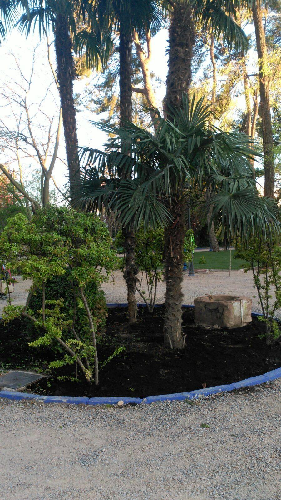 Las obras de renovación del Parque Municipal casi acabadas 12