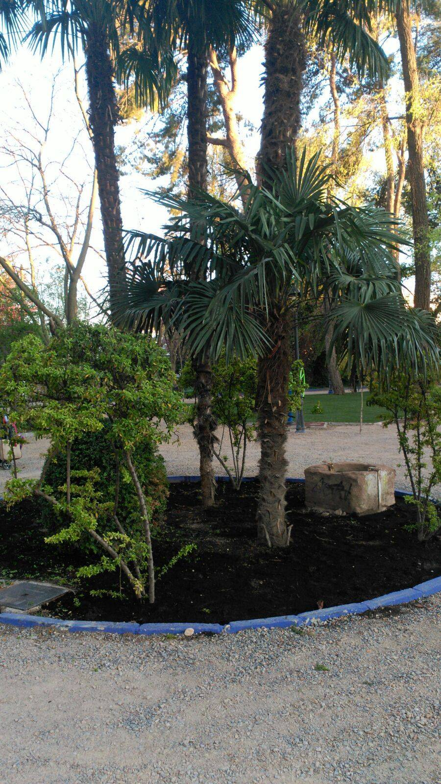 obras parque municipal casi acabadas herencia 2 - Las obras de renovación del Parque Municipal casi acabadas